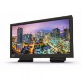 TV Logic LUM-310R 31.1